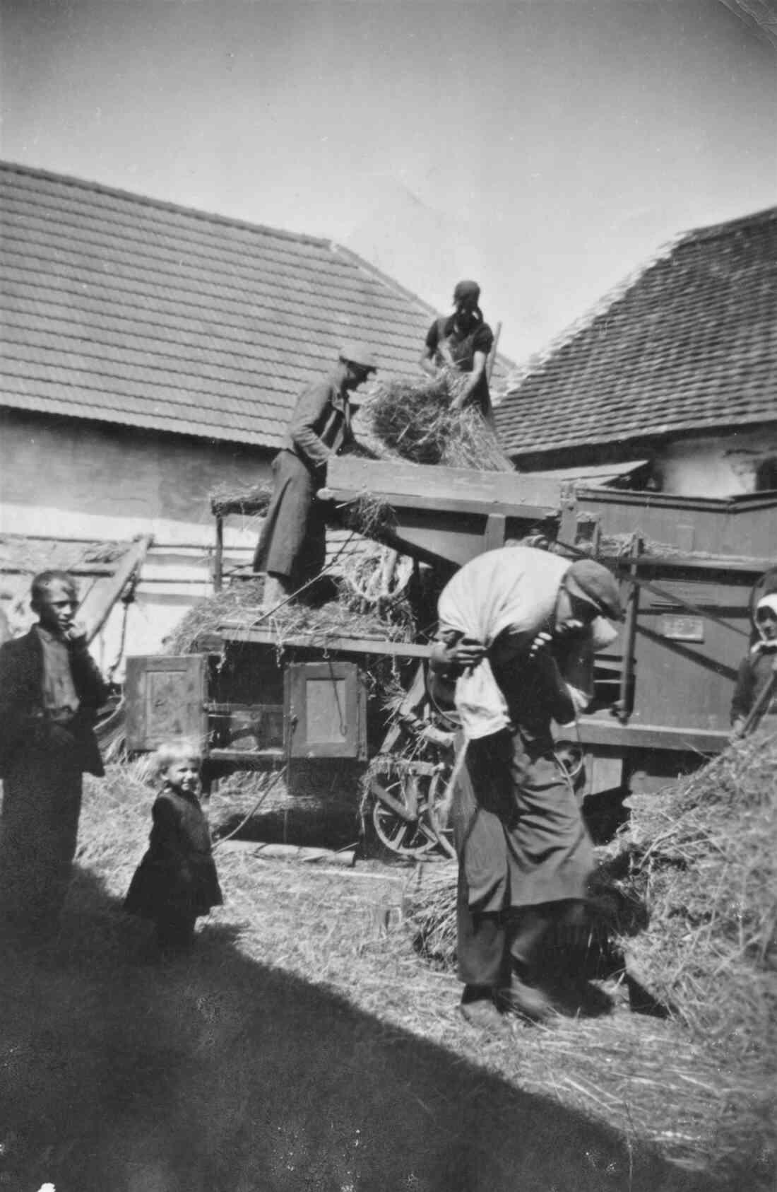 Drescharbeiten bei Fam. Gangoly (Grazerstraße 41b)